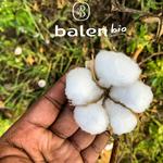 coton-bio-balen