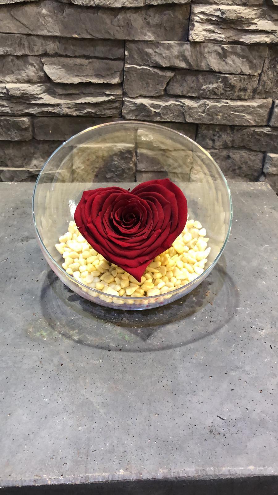 Rose-eternelle-coeur