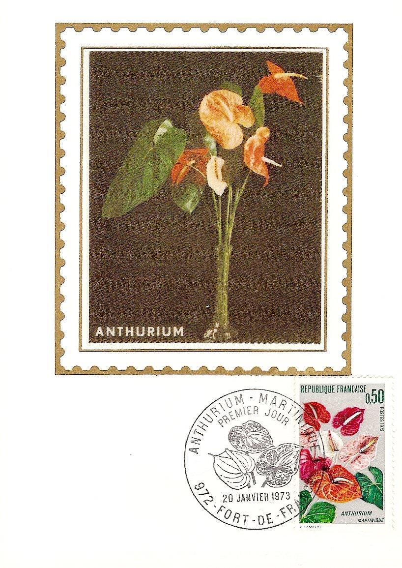 1973 ANTHURIUM 2