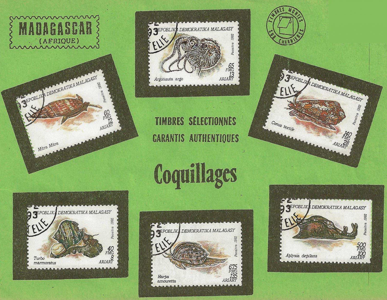 COQUILLAGES MADAGASCAR