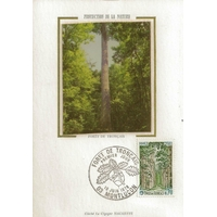 CARTE MAXIMUM 1976 / FORET DE TRONCAIS / MONTLUCON