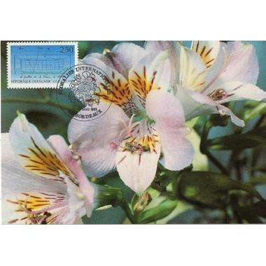 1992floralies