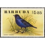 BARBUDA / ILE