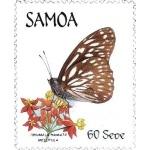 SAMOA / Iles