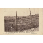 CAMPAGNE DE L'AISNE / 1916