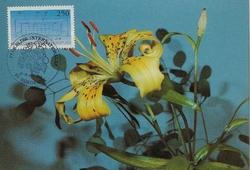 1992floralies2