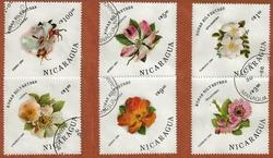 NICARAGUA FLEURS