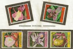orchidees bulgarie