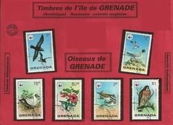 grenade oiseaux