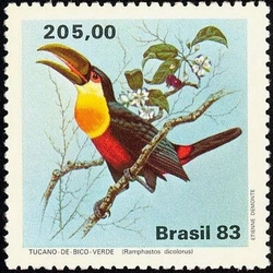 BRAZILNEUF