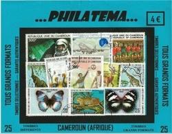 25 cameroun