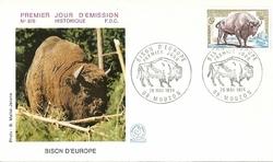BISON D'EUROPE 1974