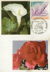 floralies nantes 1967 arum et rose