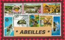 abeilles tous pays 2