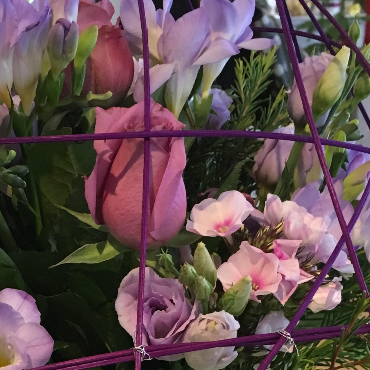 3 mois de fleurs