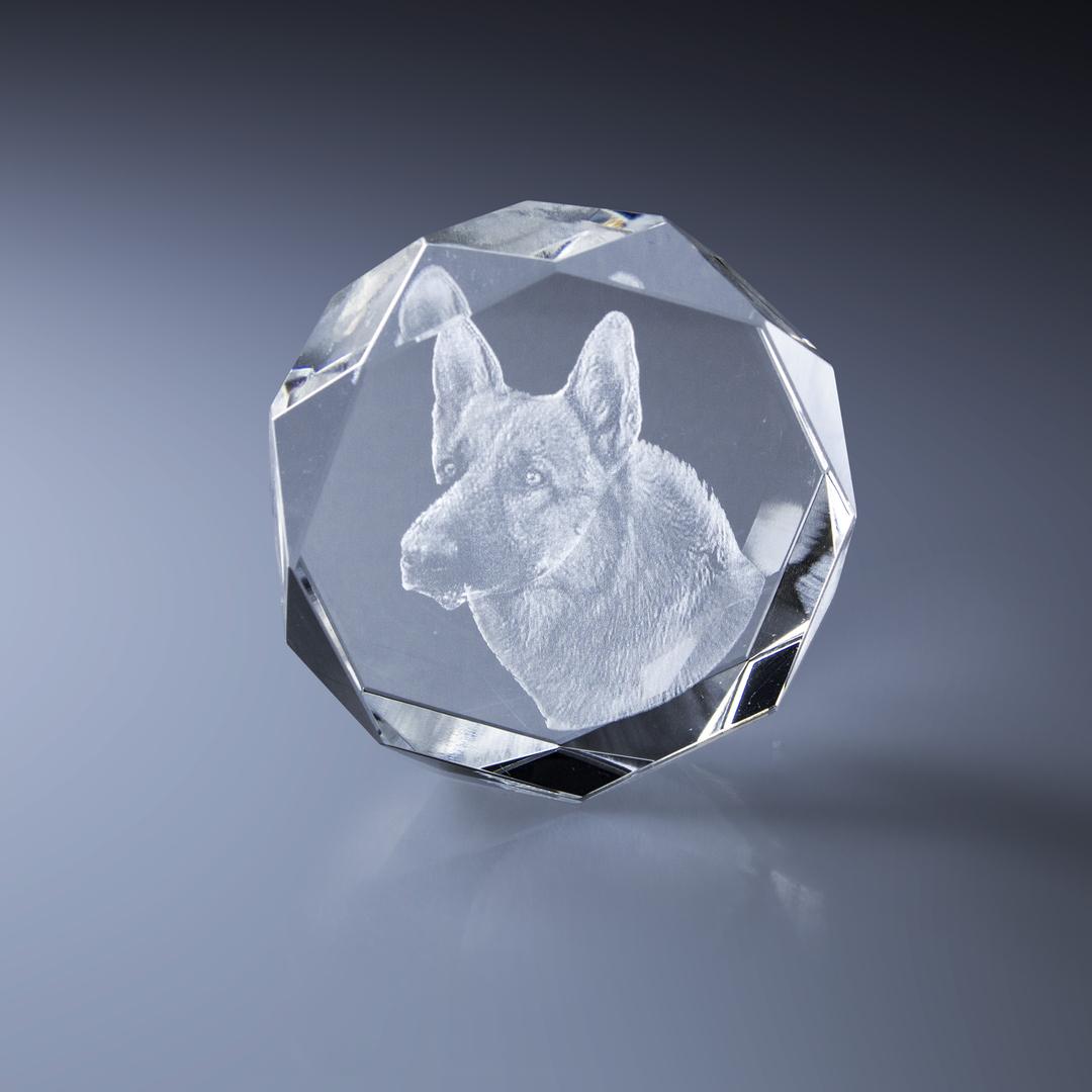 bloc_laser_3d_animaux_berger_allemand