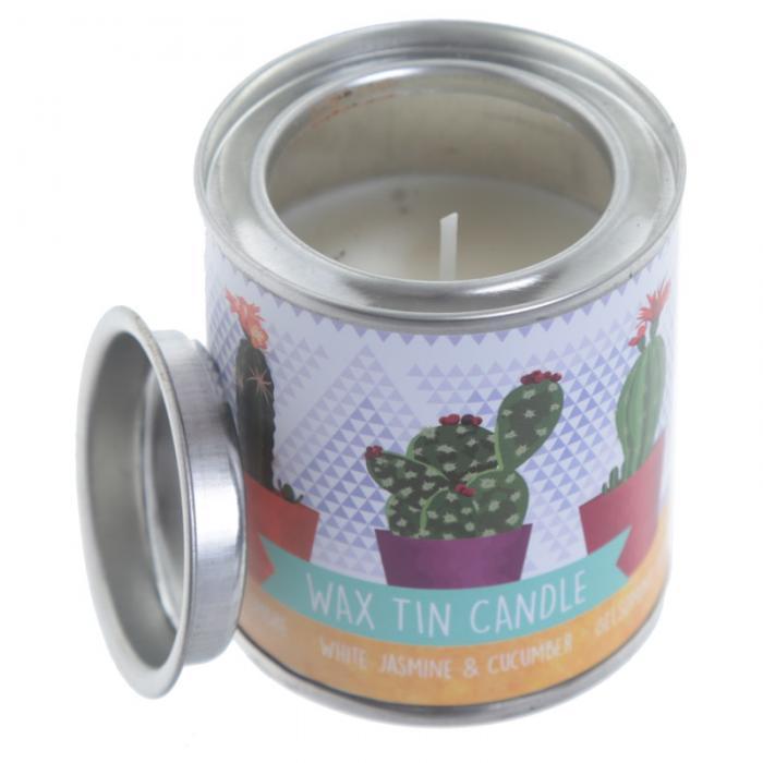 Bougie Cire de Soja Eden - Cactus Lulu Shop 4