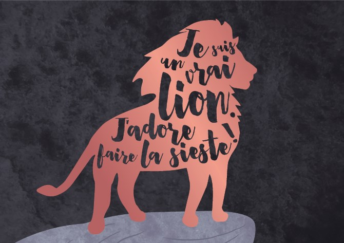 www.lulu-shop.fr carte postale double extraordinaire