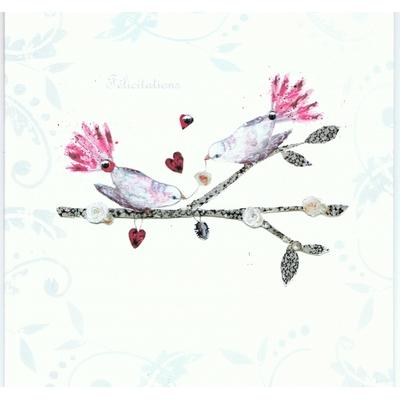Carte Postale Double : Félicitations - Deux Oiseaux
