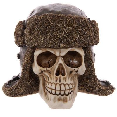 Crâne portant un chapeau d'aviateur