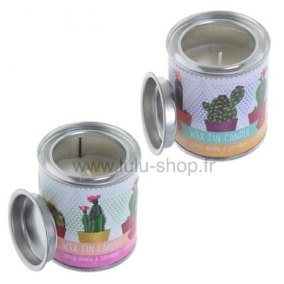 Bougie Eden à la cire de soja dans pot en étain - Motif Cactus
