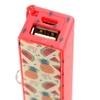 Porte-clé Chargeur USB Portable - Ananas & Pastèque Tropical Lulu Shop 6