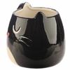 Mug Chat Noir 3