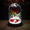 Lampe Rose Enchantée Disney  La Belle et la Bête lulu shop 4