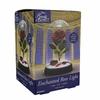 Lampe Rose Enchantée Disney  La Belle et la Bête lulu shop 5