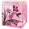 Bougie 35 heures  Orchidée sauvage lulu shop