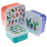 Lot de 3 Boîtes Repas - Cactus Lulu Shop 5