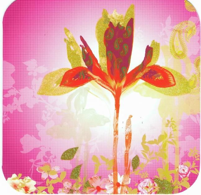 Carte Postale Double Fleur Lulu Shop