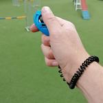 clicker chien bleu