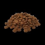 croquette-chien-sterilise