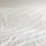 dentelle-blanc-grande-largeur-09