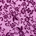couleur-prune-plum-15