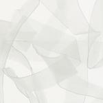 ELAST-_0002_zoom-laminette-silicone