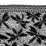 dentelle-galon-libellule-noir-vue2