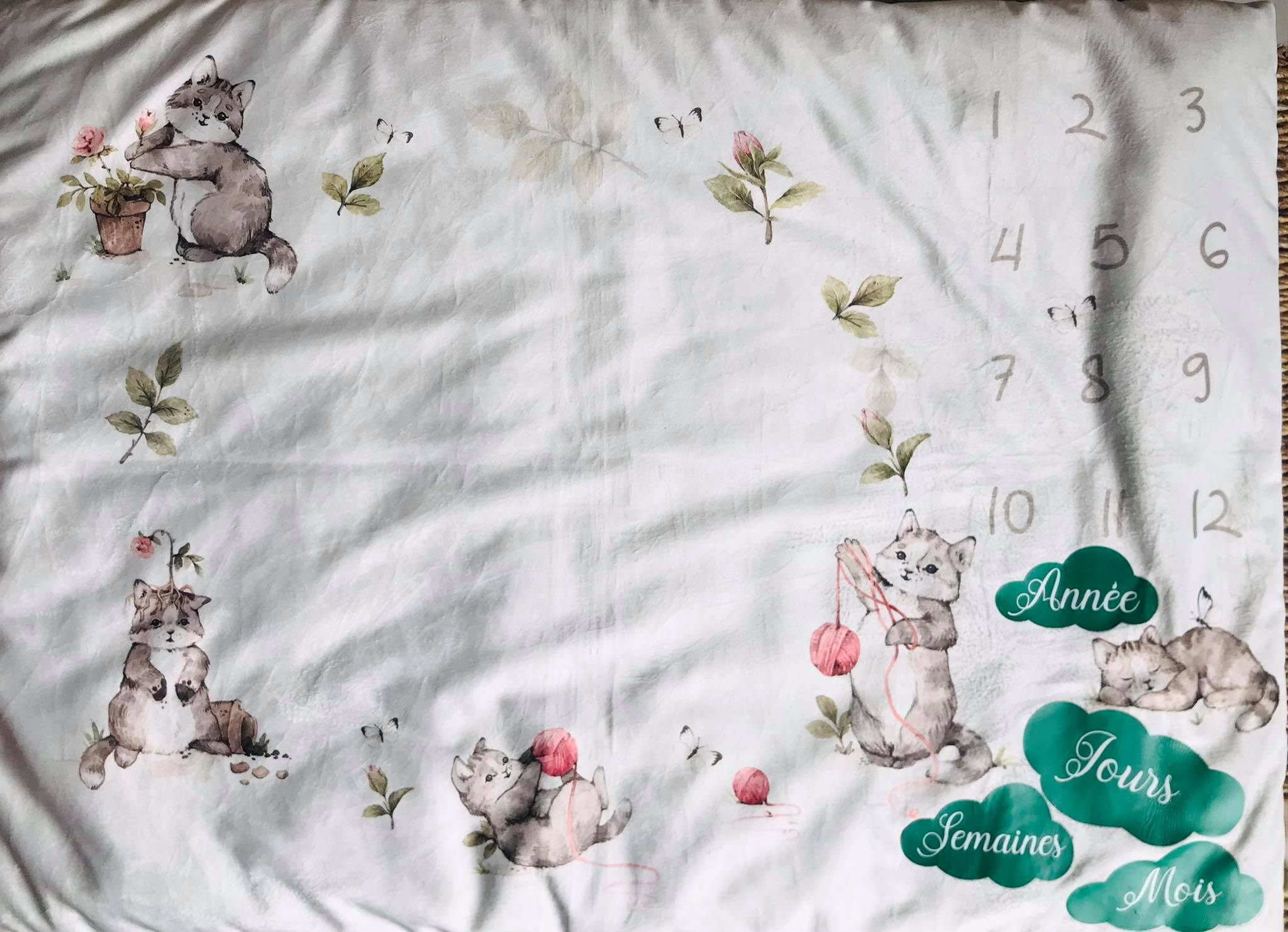 Tapis Photo/Etapes Petits chatons