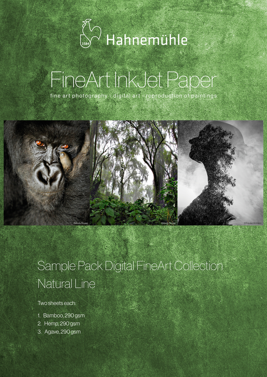 SamplePack_NaturalLine_A4
