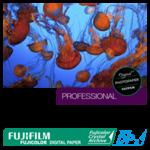 Papier Fujicolor Digital Crystal Archive Type DPII Brillant, 10,2 cm x 167,6 m, cartons de 4 rouleaux