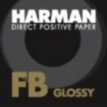 Harman Direct Positif - 10,2 x 12,7 cm 25 feuilles - 4x5 Inch