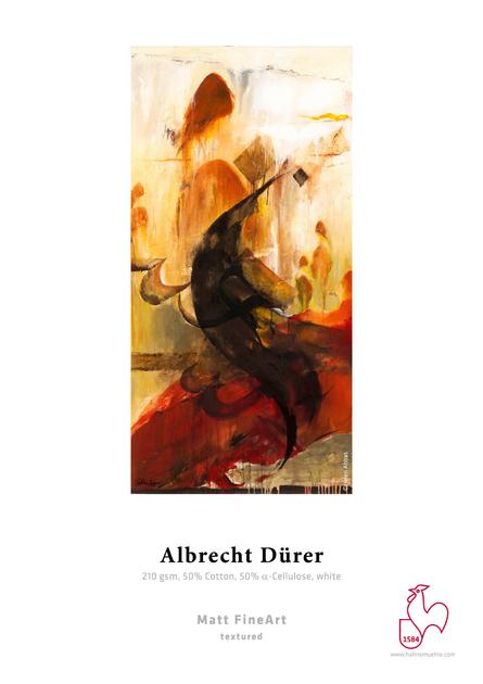 RS8_Albrecht Dürer-lpr