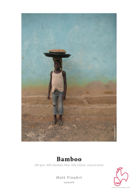 RS9_Bamboo-lpr