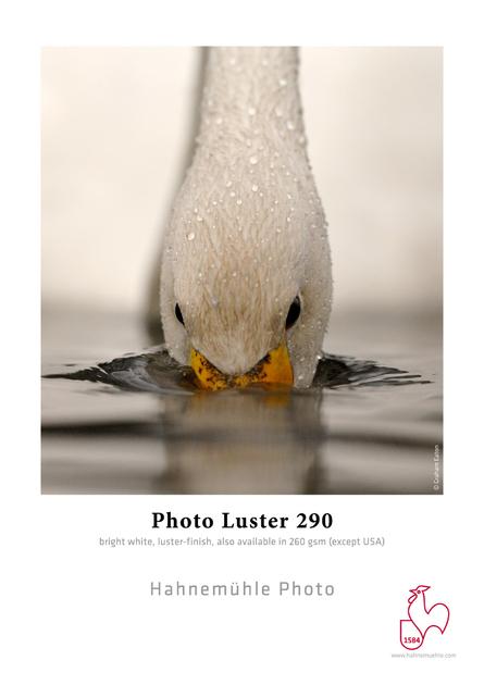 RS86_Photo Luster 290-lpr