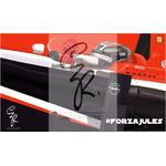 Jules2014fili