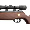 carabine-beeman