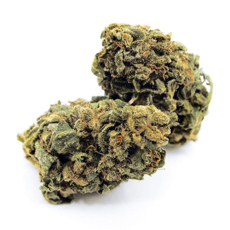 achat-cheese-cbd-en-gros-cannabis-ultra-light-europe-avec-moins-de-02-pour-cent-de-thc