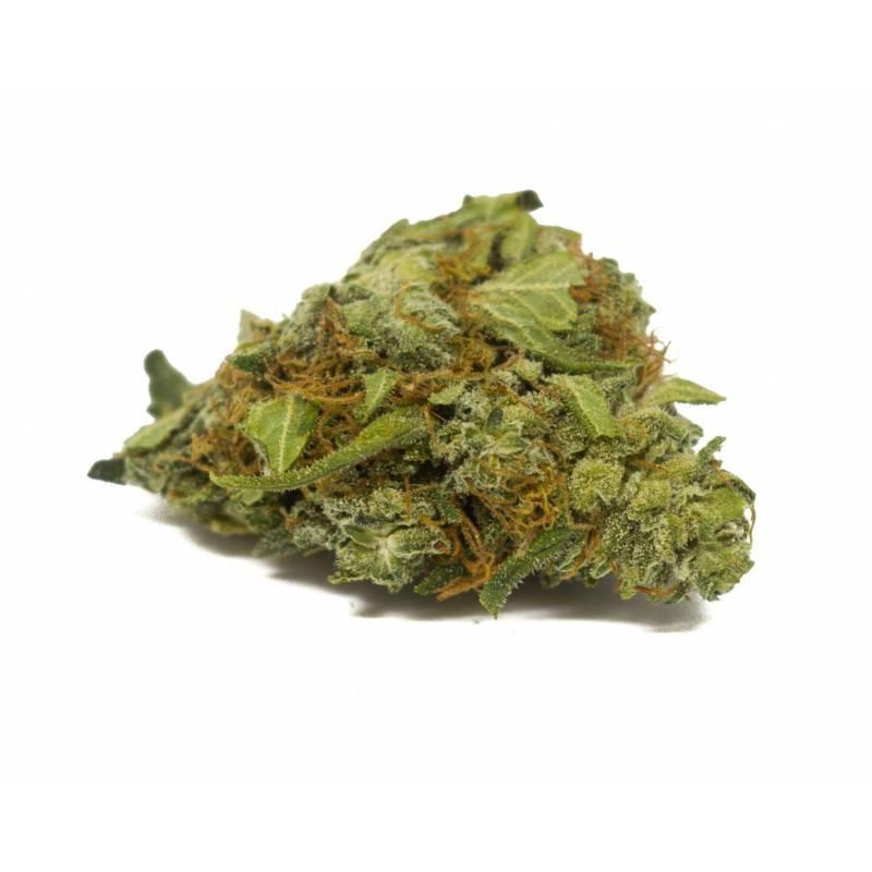 la-fleur-de-cbg-orange-bud (1)