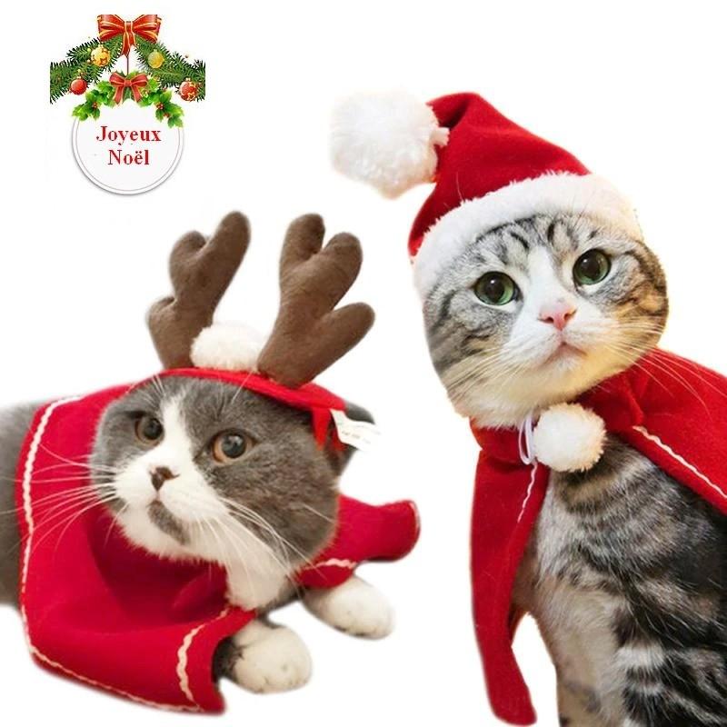 Déguisement de Noël